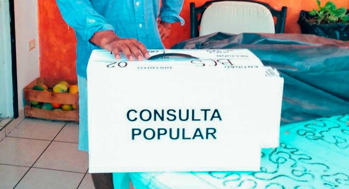 Consulta Popular genera debate en redes sociales.