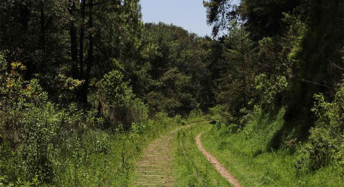 Ocoyoacac, lugar digno de visitar - cómo llegar y qué hacer