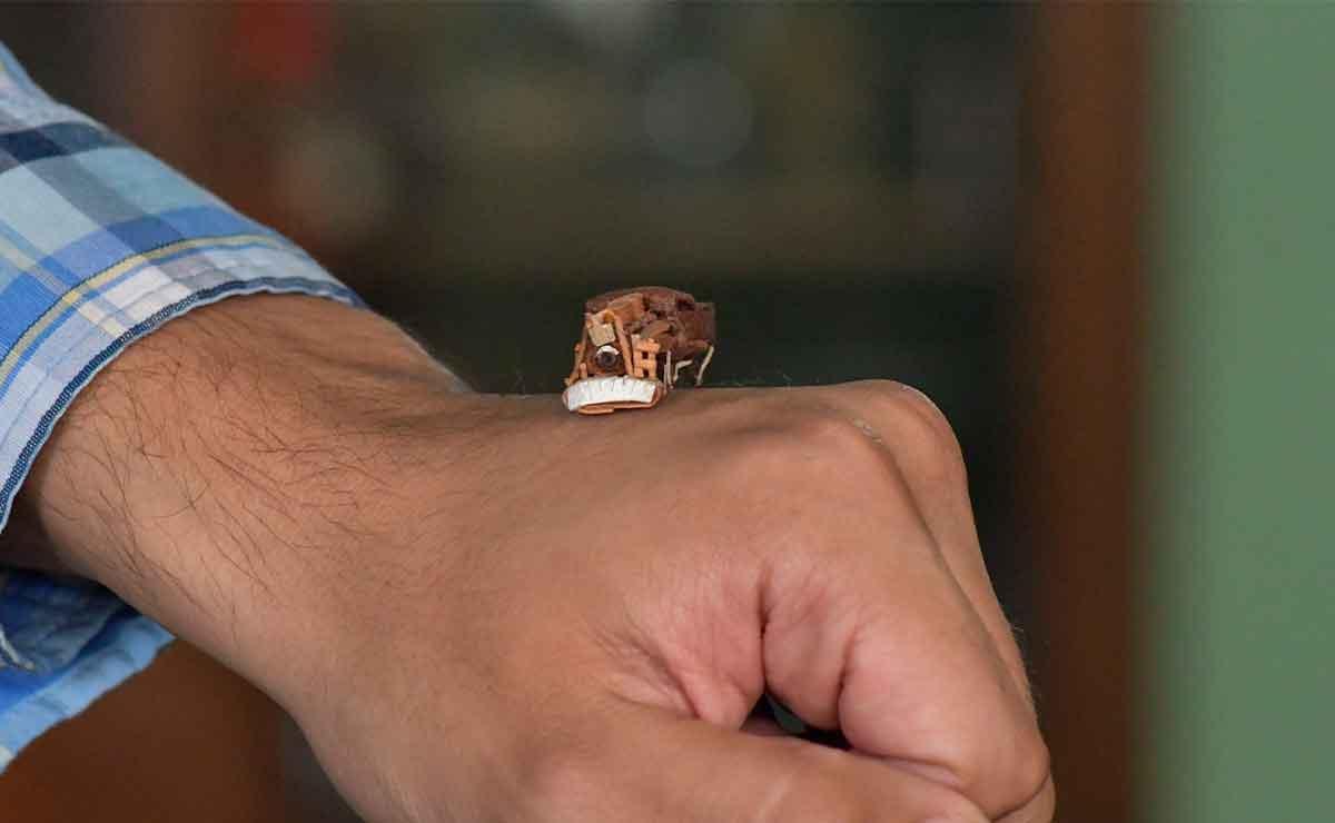 Conoce las miniaturas de Toluca: Una artesanía mexicana que nadie conoce.