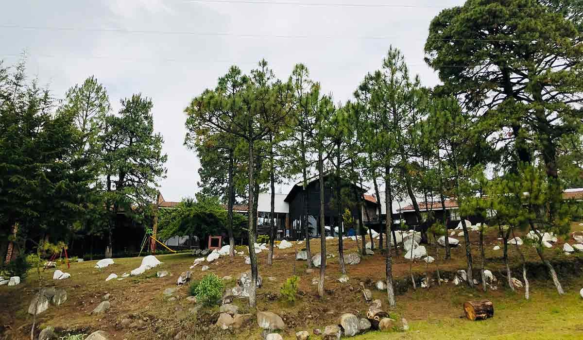 Parque Ecoturístico El Ocotal: cómo llegar y qué hacer en este lugar